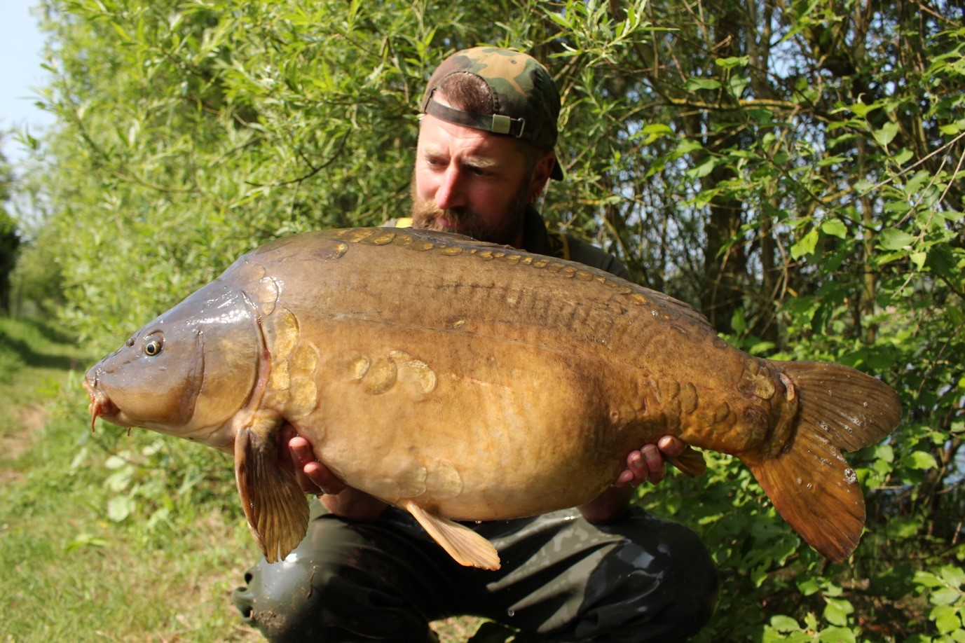 Cleverly Fisheries Top Lake Carp The Lady