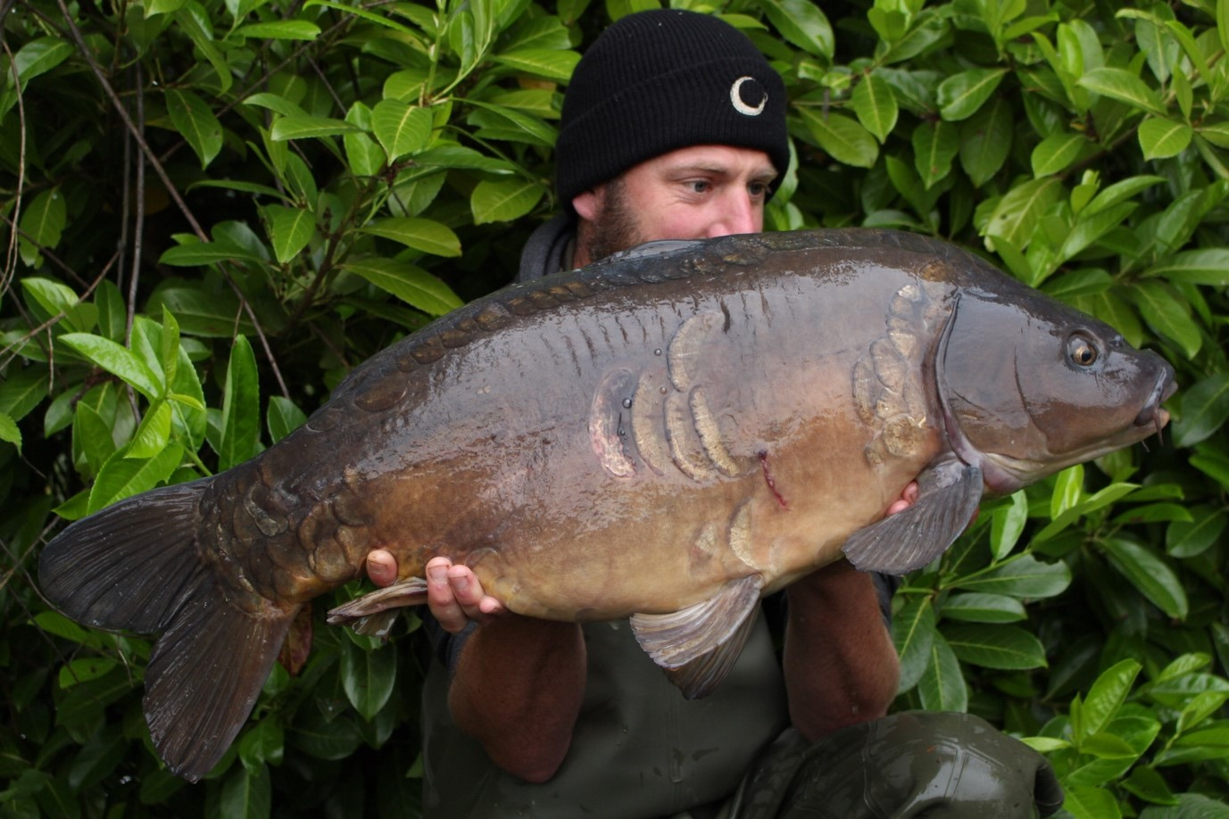 Cleverly Fisheries Top Lake Carp 5 Scale